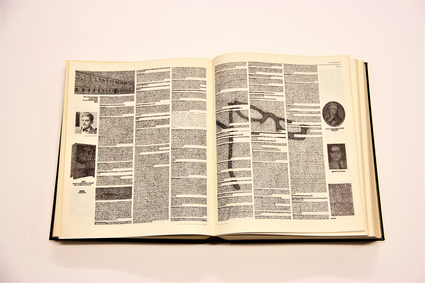 Gonzalo-Elvira-Lacan-2017-Tinta-sobre-enciclopedia-35-x-50-cm